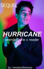 Hurricane (Brendon Urie x Reader ; SEQUEL TO HOUSE OF MEMORIES) by Imnotonfirexoxo