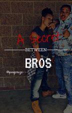 A Secret Between Bros (Lesbian Story) by yunqcraze