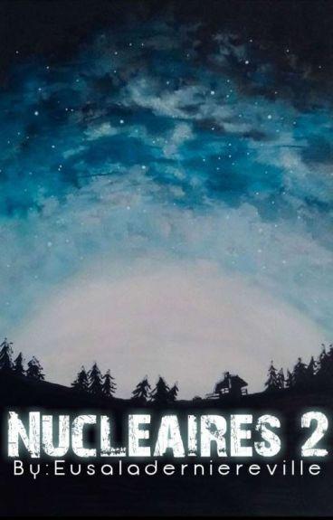 Nucléaires 2 : entre deux camps