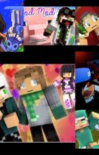 Aphmau RolePlay Book by LoveRespectStories