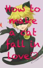 How To Make A Cat Fall In Love by Fabulous-fangirl
