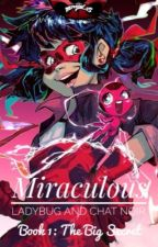 Miraculous: Marele secret (Ladybug and Chat Noir) by A_simple_name