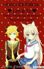 ~ Amor De Nekos ~ ❤ Len & Tu ❤ by Fire_Flawer
