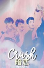 CRUSH by MinAnny