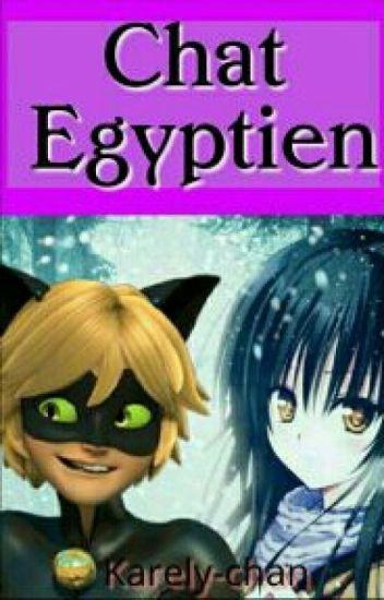 chat égyptien (Chat Noir Y Tu)//pausada\\