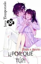 ¡¿Por qué Tú?! (Budo x Ayano) 1era Temporada by dodito23