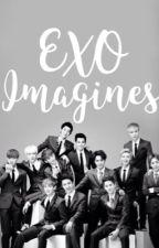 EXO Imagines by JaMiiePabo