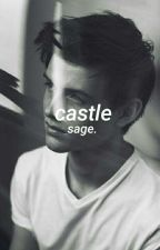 Castle • Plots & Covers• by slayingsince09