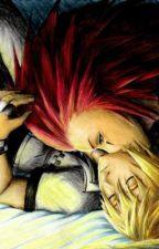 Falling (Kingdom Hearts, AkuRoku) by YunoSenpai