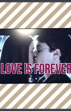 Harry & Ginny Love is Forever by MaddieT3401