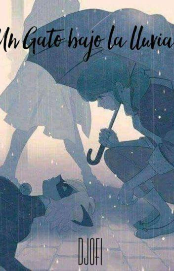 Un gato bajo la lluvia (MariChat)