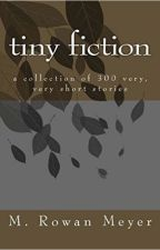 Tiny Fiction by MRowanMeyer