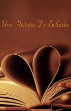 Une histoire de Bellarke by Je_suis_une_chieuse