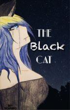 The Black Cat by Scariro