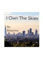 I Own The Skies by belanime