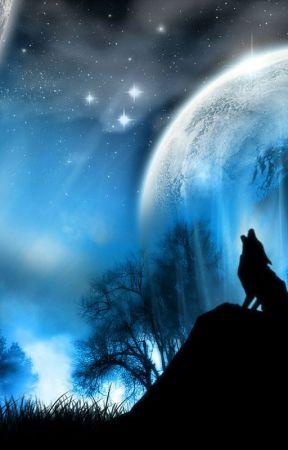 Vlkodlak, upír a čarodějnice by SakiKurosaki