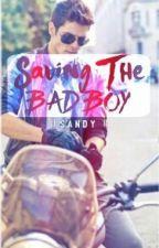 Saving The Bad Boy by sandyneyney