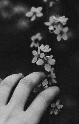 Yêu em , là điều đẹp nhất anh đã làm