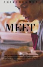 Meet | h.s by SmileHemmox