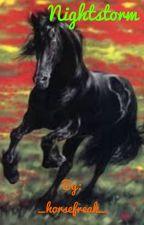 Nightstorm the Wild Stallion by _horsefreak_
