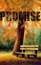 Promise by TriDeGiZardGenTer