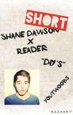 """Shane Dawson x Reader: """"DiY's"""" by YouTwoobs"""