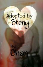 Adopted by Stony (Tony x Steve) (Avengers) (Reader Insert) by DemonicSpawns