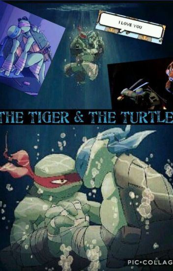 The Tiger and the Turtle