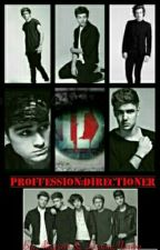 PROFFESSION: DIRECTIONER by the_old_Alix2489