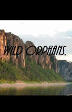 WILD ORPHANS. by Cloudsreads