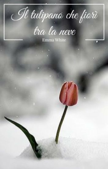Il tulipano che fiorì tra la neve | CARTACEO OTTOBRE 2O18|