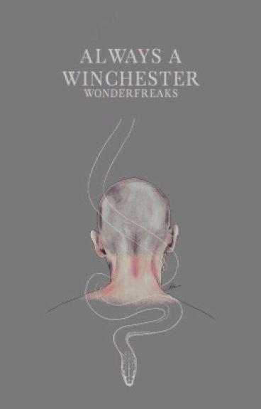 Always A Winchester || Teen Wolf & Supernatural One Shot
