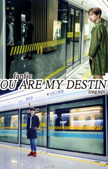 [TÙNG ỔN - FANFIC] YOU ARE MY DESTINY