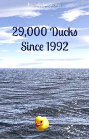 29 000 Ducks by BeautifulandCrazy