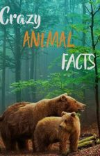 Animal Facts by karinaBierley