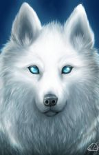 Spirit Animals by Captain_Fandom513