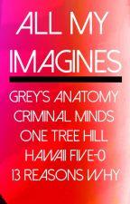 Grey's Anatomy Preferences/Imagines by greyxsloan