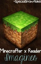Minecrafter x Reader Imagines by SpecialSnowflakes
