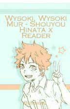 Wysoki, Wysoki Mur - Shouyou Hinata x Reader by hsych0