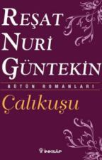 ÇALIKUŞU by istanbulpera