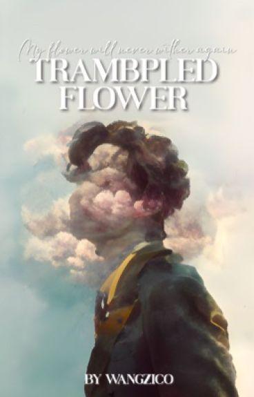 trampled flower » vhope [side FF]
