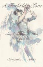 A Forbidden Love (Angel!Reader X Dark Angel!Levi) by One_Hell_Of_A_Sami