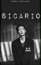 Sicario. [Double B] by KooJinhwanie