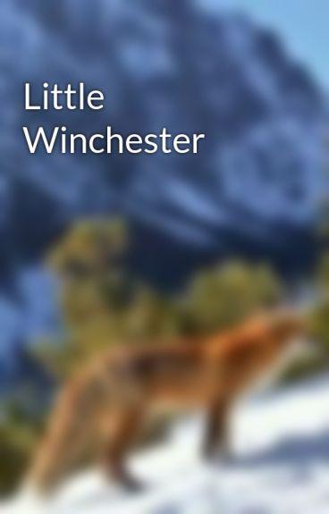 Little Winchester