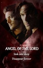 Angel of the Lord (Tome 2) by E_McCarver