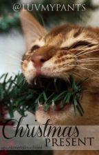 christmas present • muke PL (soon) by unikalnienotoryczna