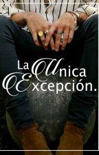 La Única Excepción. | H.S | by aeohharry_x