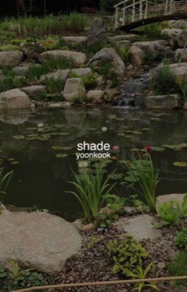 shade ⚣ yoonkook