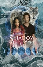 Shadow of the Wolf ▪ Sam Winchester [2] ✓ by CharlieRaven