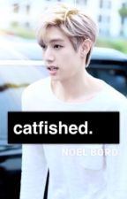 Catfished  by noelbord